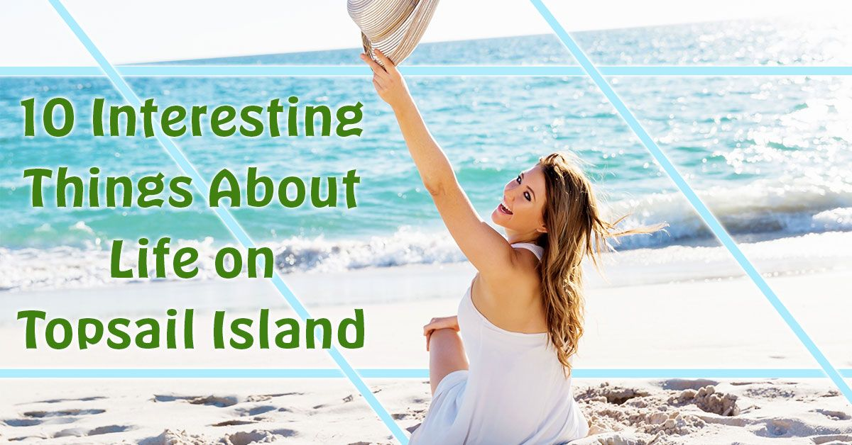10 Interesting Things About Life on Topsail Island
