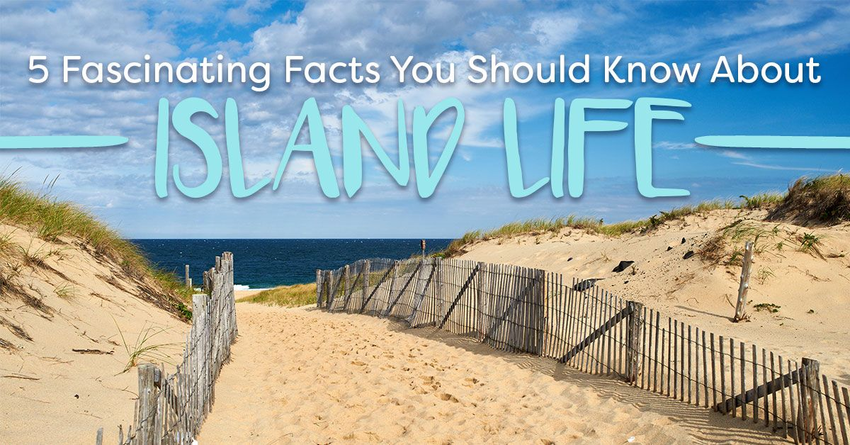 Facts You Should Know About Island Life
