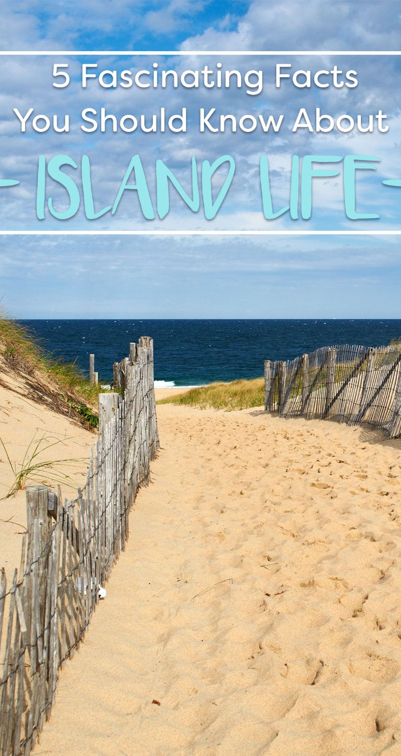 Facts You Should Know About Island Life Pin