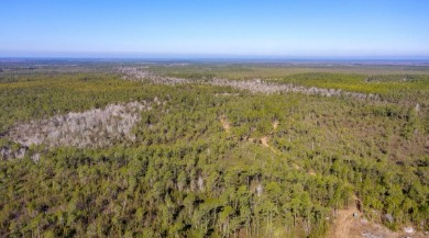 19 acres of land for sale in Hampstead, NC in Pender County | Century 21 Action Topsail Realty