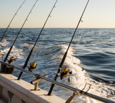 deep sea fishing charter | Century 21 Action